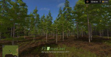 Лес на карте Черкащина в игре FS 2017