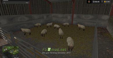 Овцы на карте