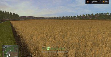 Большое поле