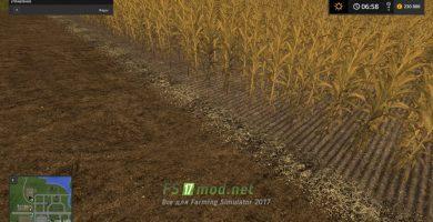 Грунтовая текстура на поле