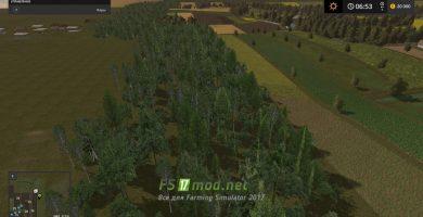 Польские леса