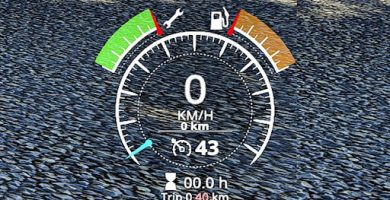 A real odometer Fs19